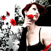 Amanda Palmer and The Grand Theft Orchestra